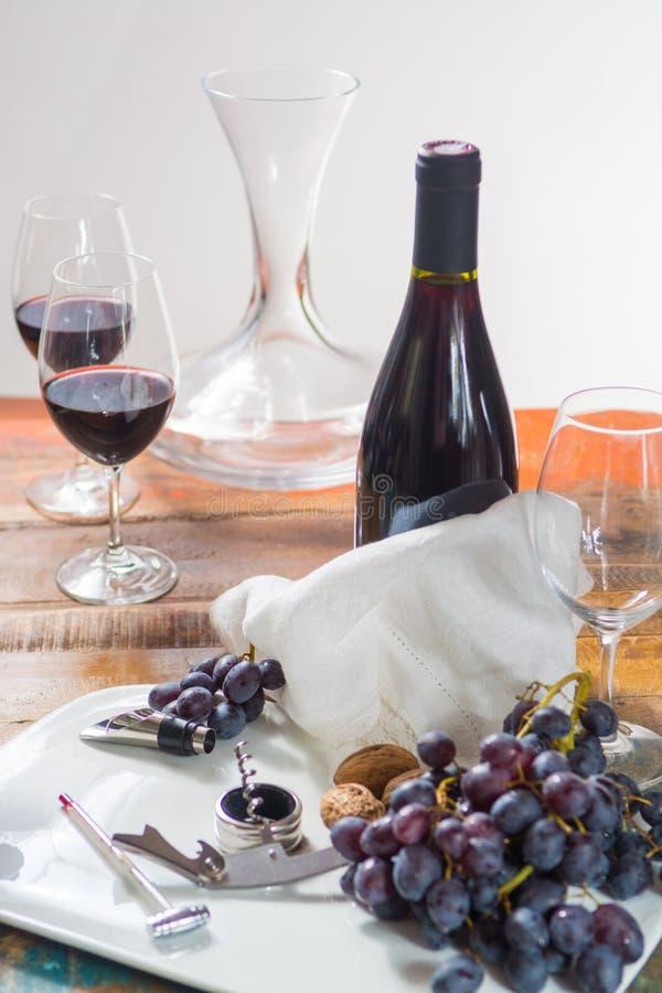 Evento professionale dell'assaggio del vino rosso con il vetro del vino di qualità immagine stock