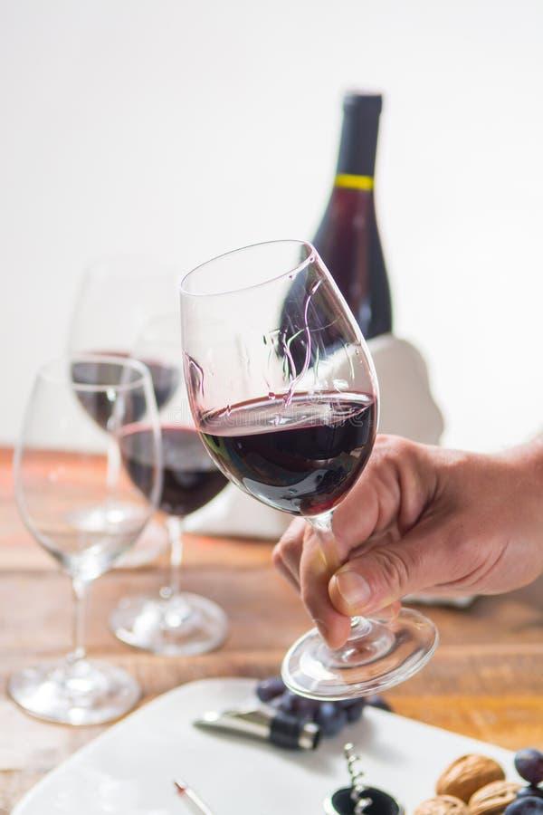 Evento profissional do gosto de vinho tinto com vidro de vinho de alta qualidade foto de stock