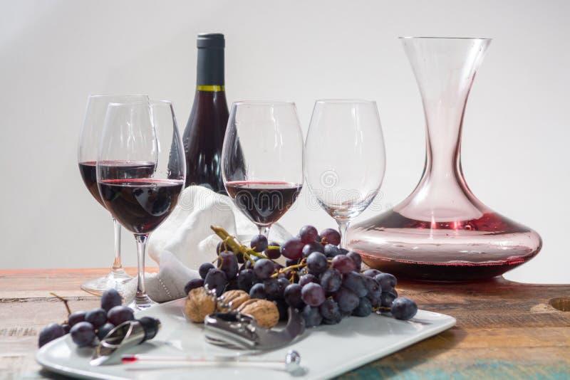 Evento profissional do gosto de vinho tinto com vidro de vinho de alta qualidade fotos de stock royalty free