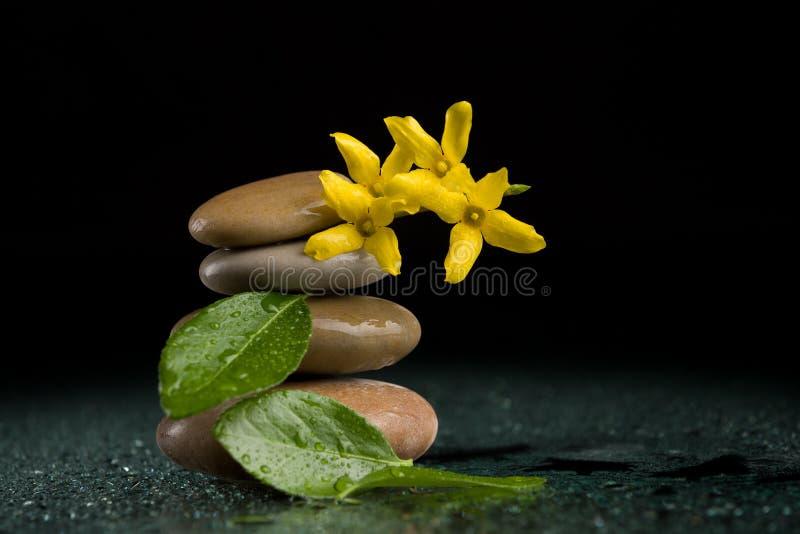 In evenwicht brengende zen stenen op zwarte met gele bloem stock afbeelding