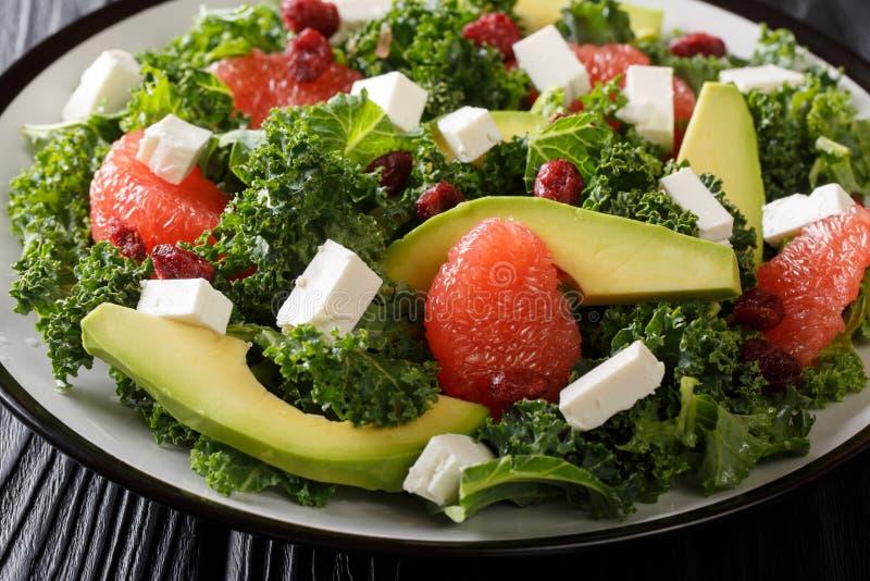 Evenwichtige salade van bladkool, avocado, grapefruit, kaas en droog Amerikaanse veenbessenclose-up op een plaat horizontaal stock foto's