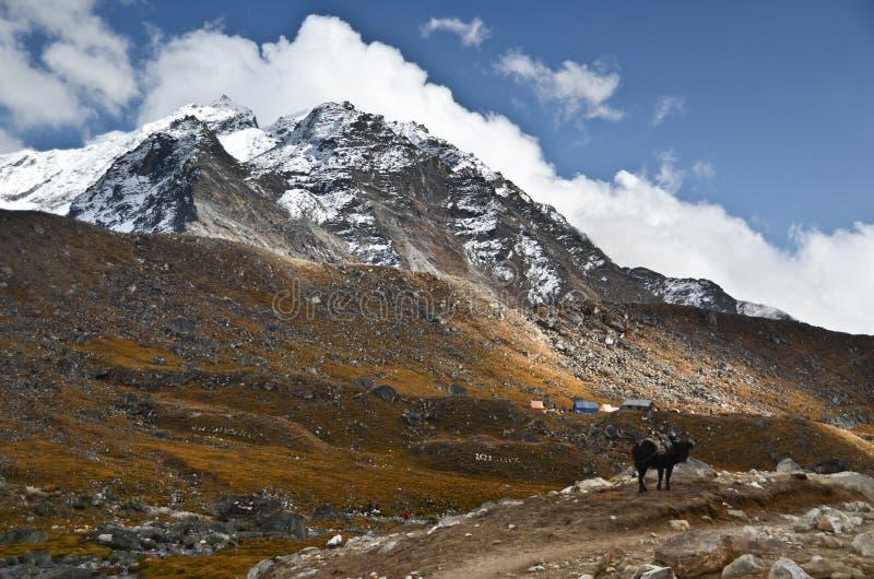 Everest-Hinterlandschaft lizenzfreie stockfotos