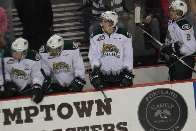 Everett Silvertips. WHL team Everett Silvertips in their box royalty free stock photos