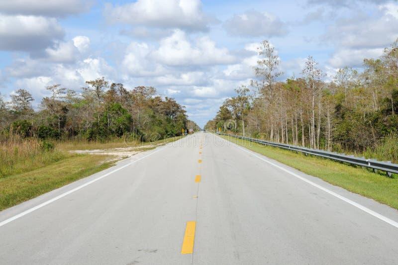 everglades εθνικός δρόμος πάρκων στοκ φωτογραφία με δικαίωμα ελεύθερης χρήσης