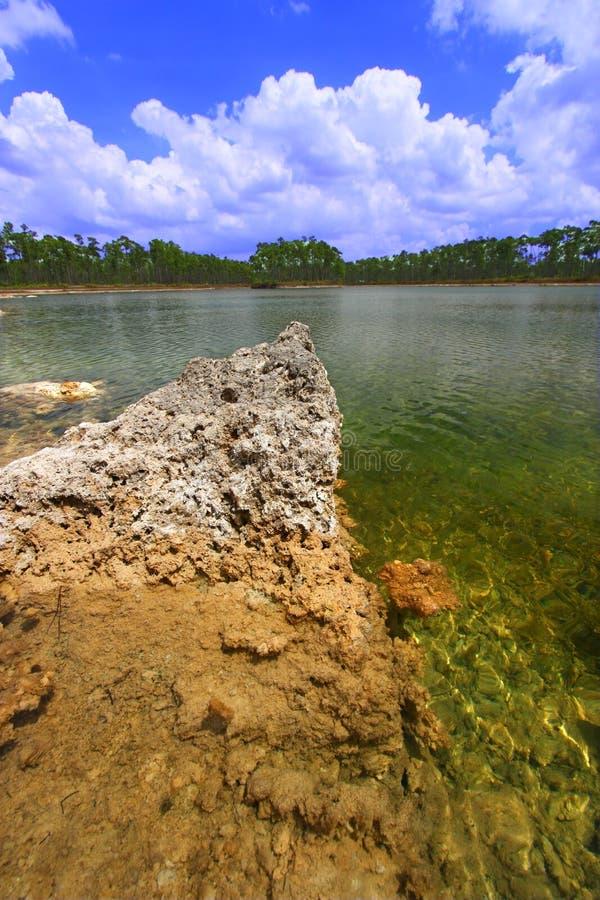 everglades εθνικό πάρκο ΗΠΑ στοκ φωτογραφία