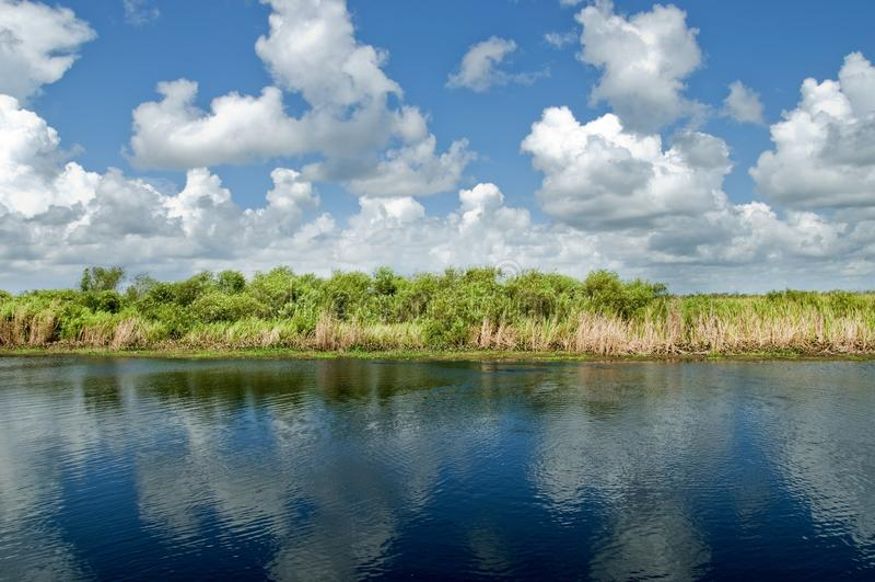 Everglades, ΛΦ στοκ εικόνες