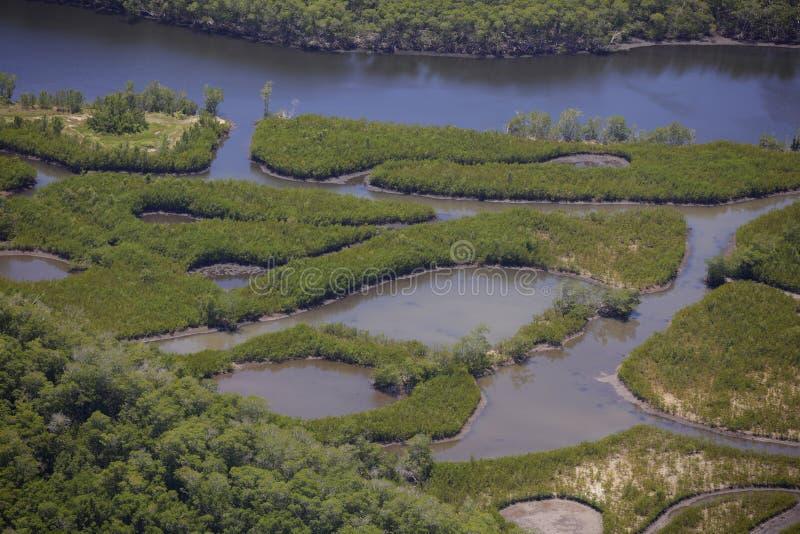 everglades Φλώριδα στοκ εικόνα με δικαίωμα ελεύθερης χρήσης