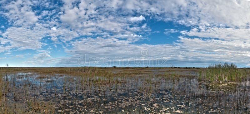 Everglades, Φλώριδα στοκ φωτογραφία