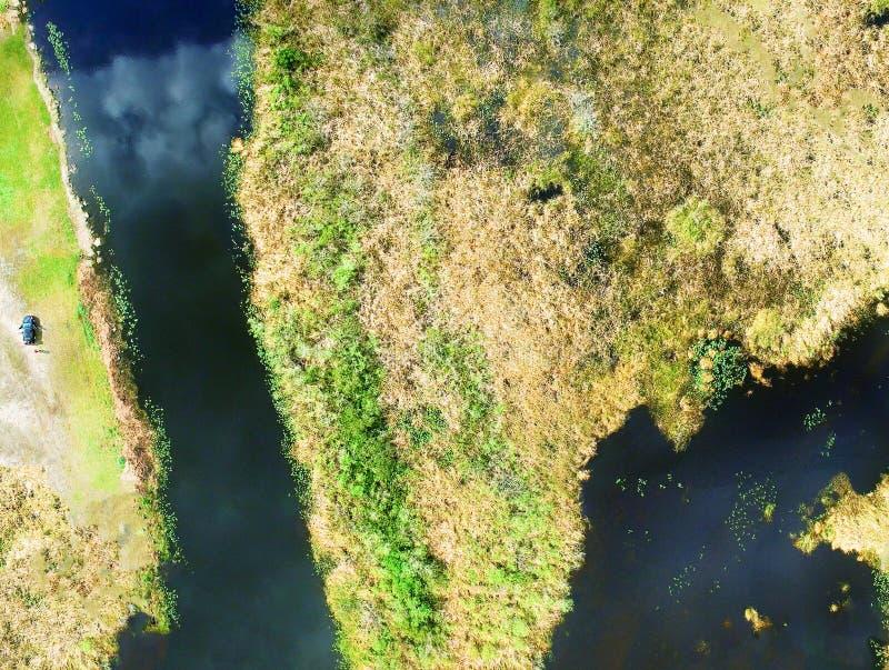 Everglades Florida Flyg- över huvudet sikt av jordyttersida royaltyfria foton