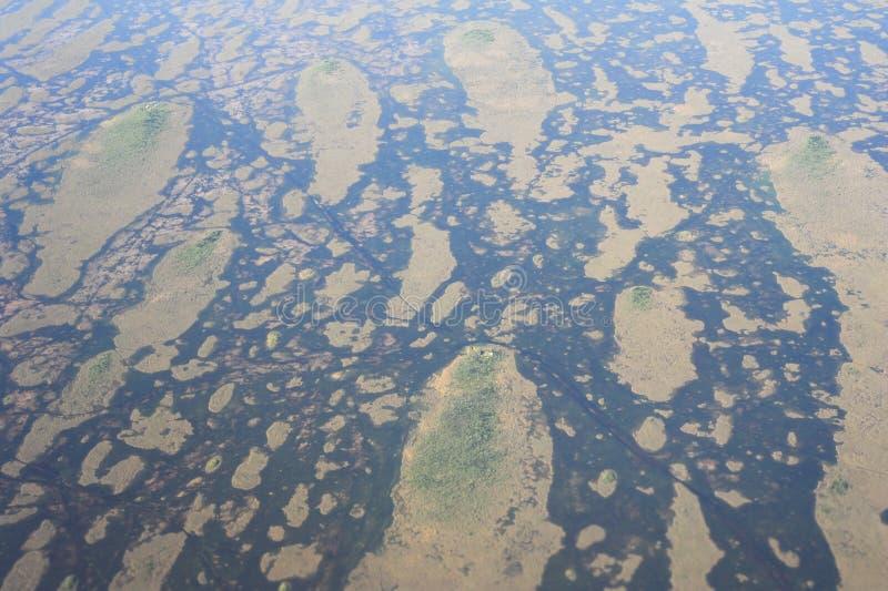 Everglades of Florida near Miami royalty free stock photos