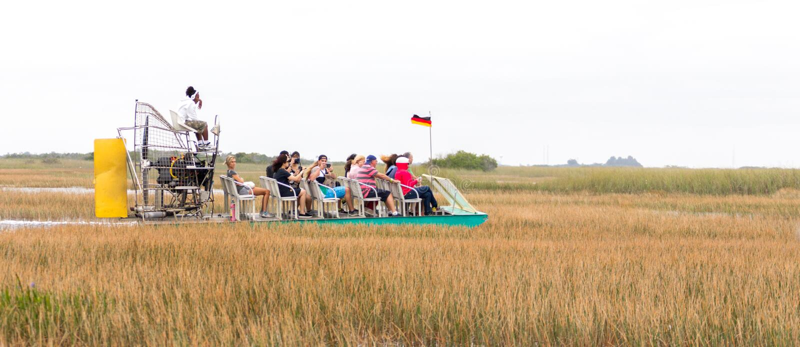 EVERGLADES, FLORIDA, USA - DECEMBER 8, 2016 : Airboat tour at mangrove forest in Everglades swamp. EVERGLADES, FLORIDA, USA - DECEMBER 8, 2016 : Airboat tour at stock photo