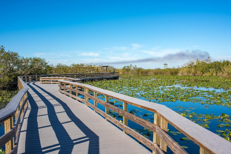 Everglades National Park in Florida. Beautiful picturesque and sunny and tranquil day at Everglades National Park in Homestead, Florida. Everglades National royalty free stock photography