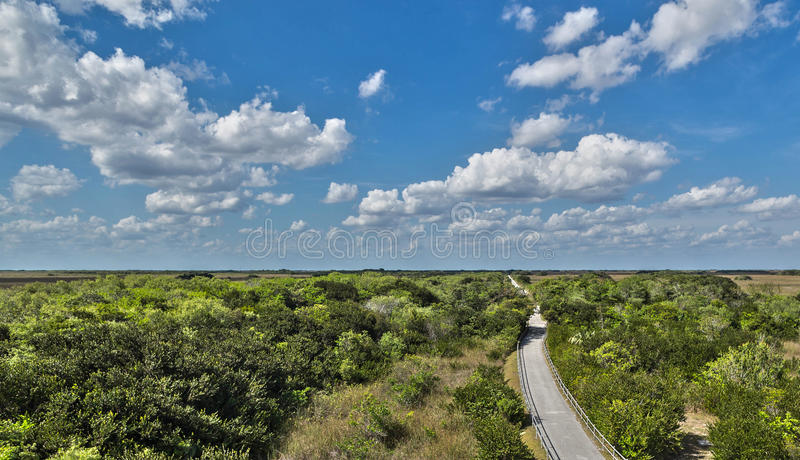 Everglades National Park. Shark River trail at Everglades National Park stock photos