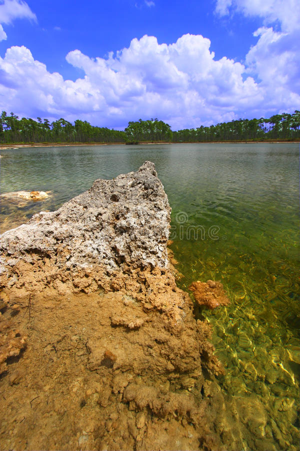 Everglades National Park - USA. Scenic view of a lake in the Everglades National Park - USA stock photography