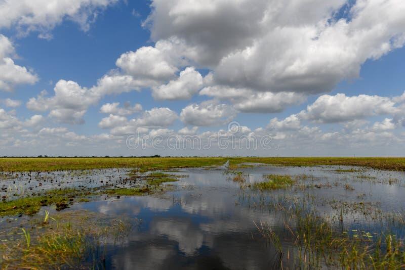 Everglades-Nationalpark - Florida lizenzfreies stockbild
