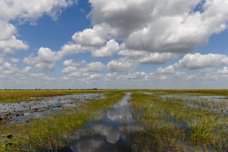 Everglades-Nationalpark - Florida stockfotos