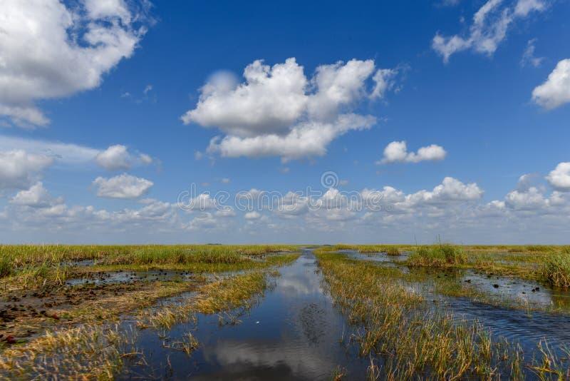Everglades-Nationalpark - Florida lizenzfreie stockfotografie