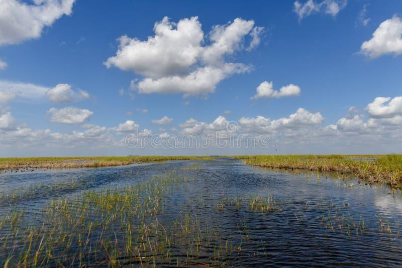 Everglades-Nationalpark - Florida lizenzfreie stockfotos