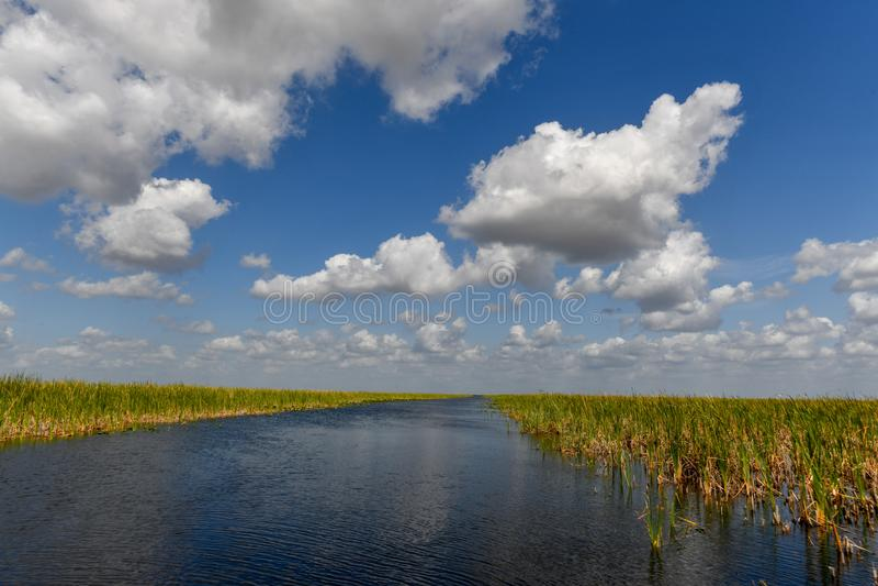 Everglades-Nationalpark - Florida stockfotografie