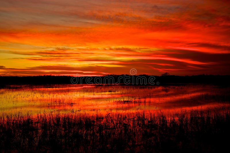 Everglades Sunset stock photos