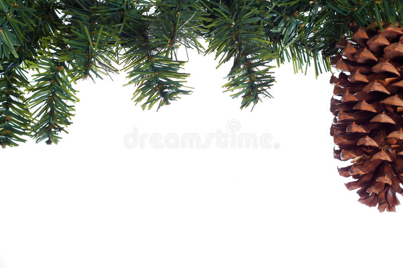 Download Evergreen border stock image. Image of needles, green - 26794411