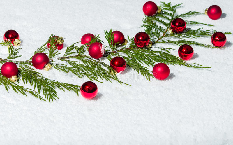 Evergreen bough with red ornaments. Evergreen bough in the snow with red Christmas ornaments stock images