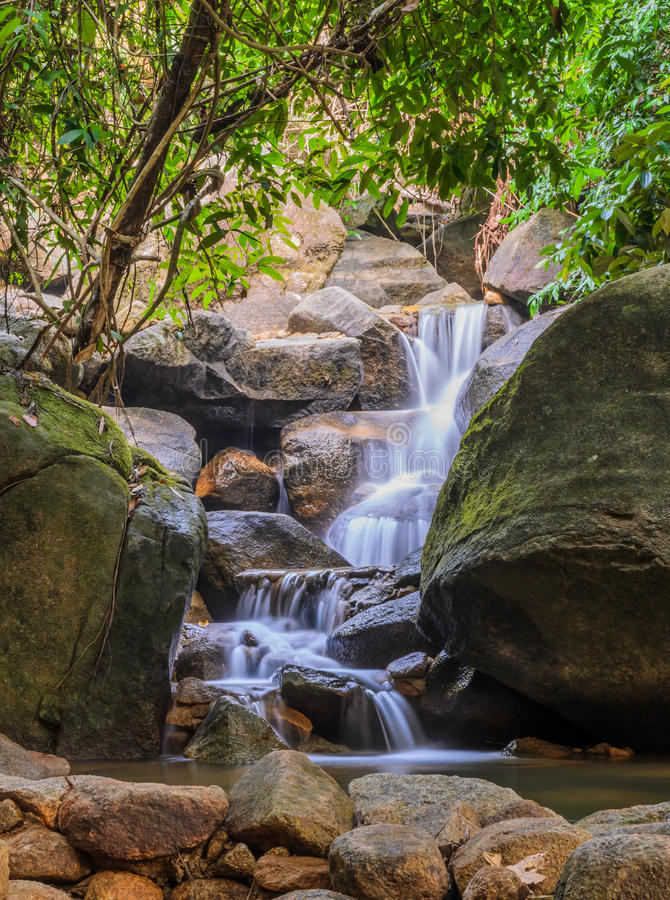 Download Evergreen forest waterfall stock image. Image of nature - 43423281