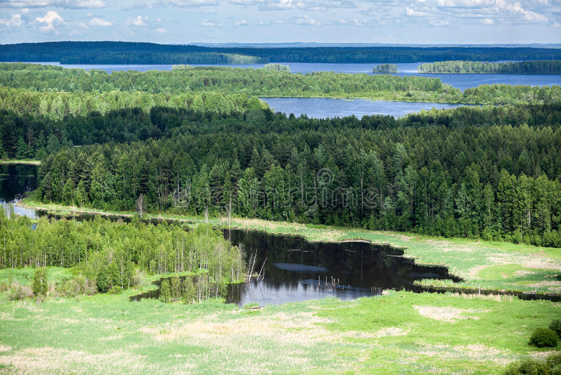 Evergreen woods and blue lakes in Karelia, aerial view. Evergreen woods and blue lakes in Karelia, aerial stock image