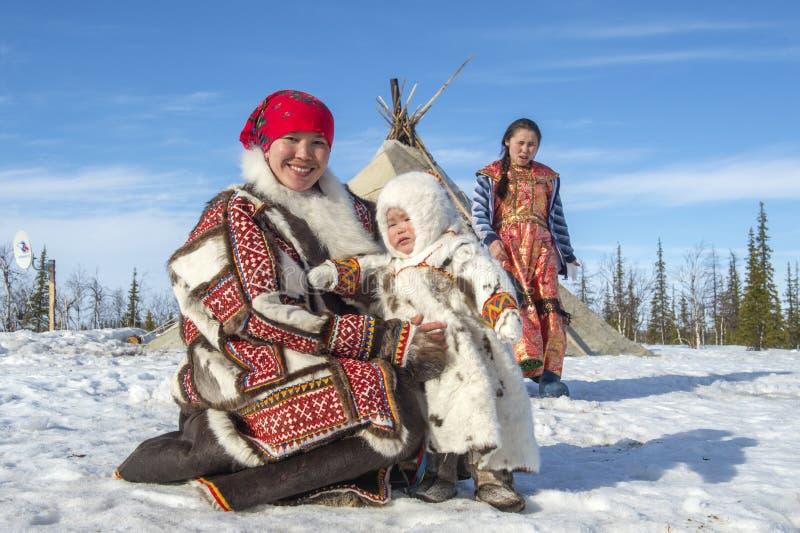 Everyday life of Russian aboriginal reindeer herders in the Arctic. stock image