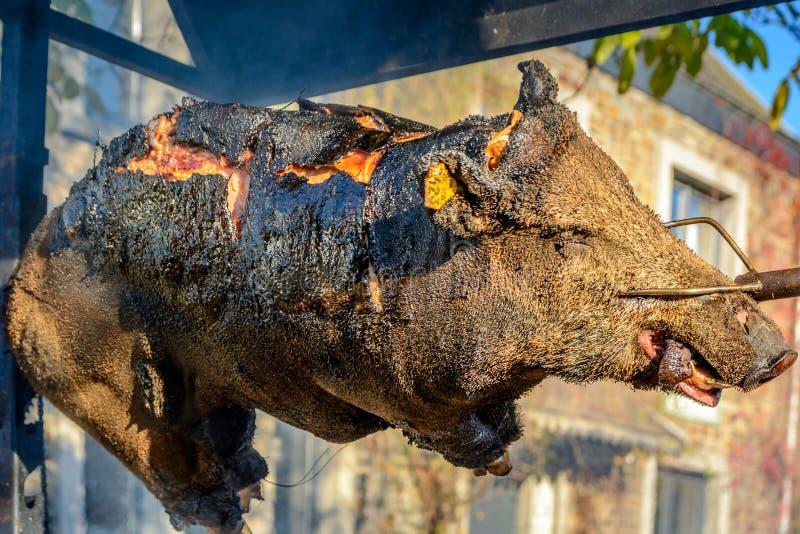Everzwijn op het spit stock afbeeldingen