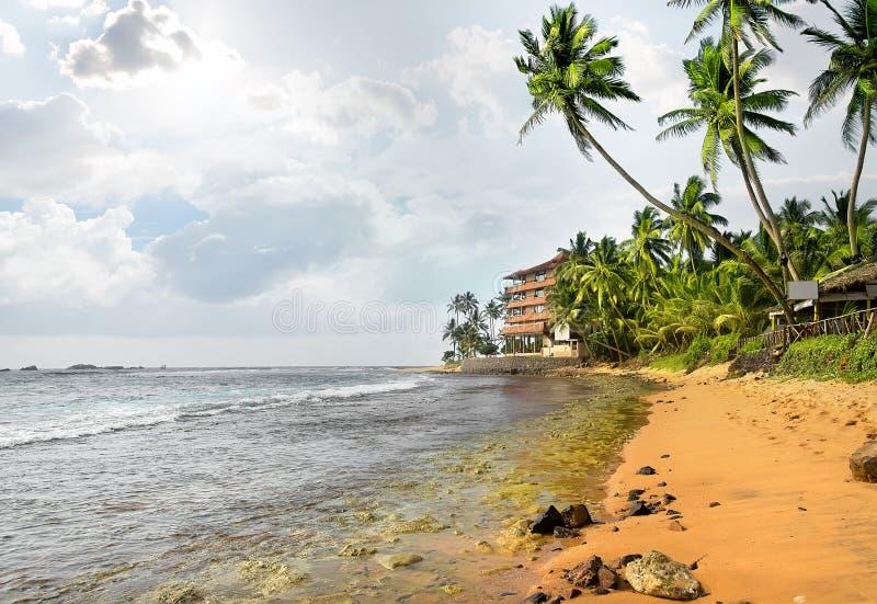 Evevning na praia fotos de stock royalty free
