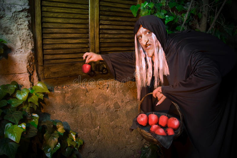 Download Evi Witch stock image. Image of alchemist, horror, pagan - 13351749