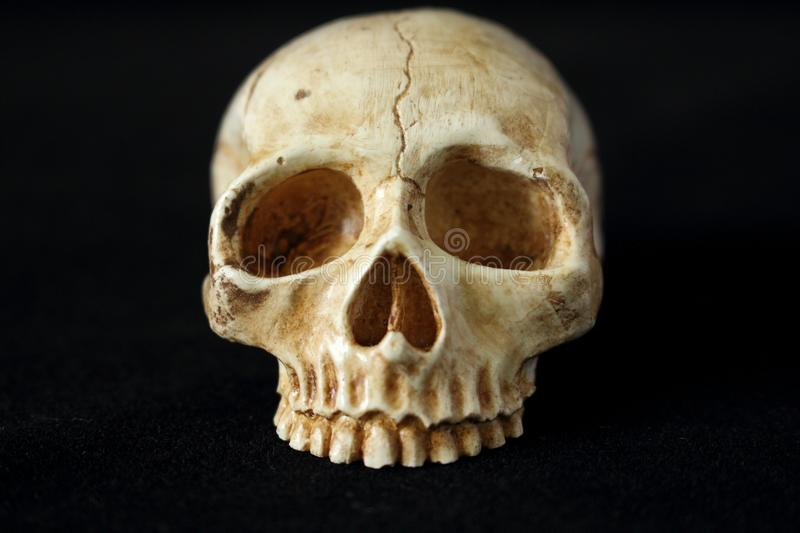 An evil human skull on a black background. An old evil human skull on a black background for halloween royalty free stock image
