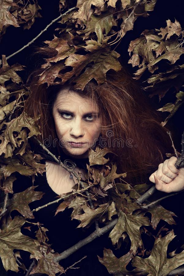 Evil witch with leaves and tree branches royalty free stock image