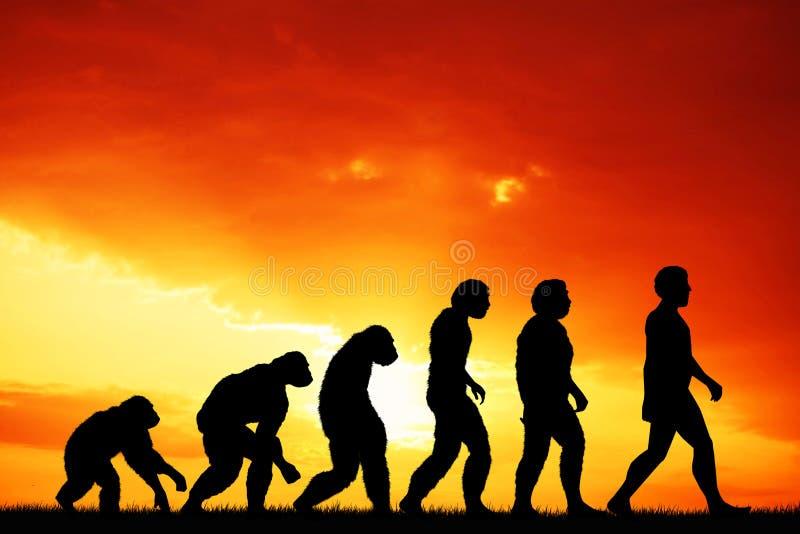 Evolução humana ilustração royalty free