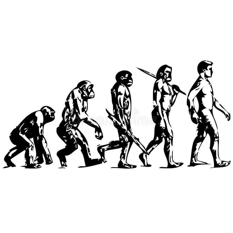 EVOLUÇÃO HUMANA ilustração stock