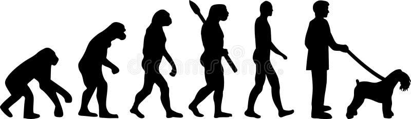 Evolución de Kerry Blue Terrier ilustración del vector