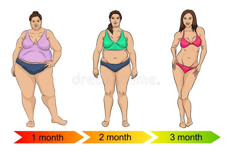 Evolución del cuerpo femenino de gordo a enrarecer ilustración del vector