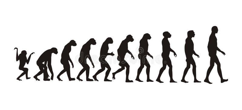 Evolución humana stock de ilustración