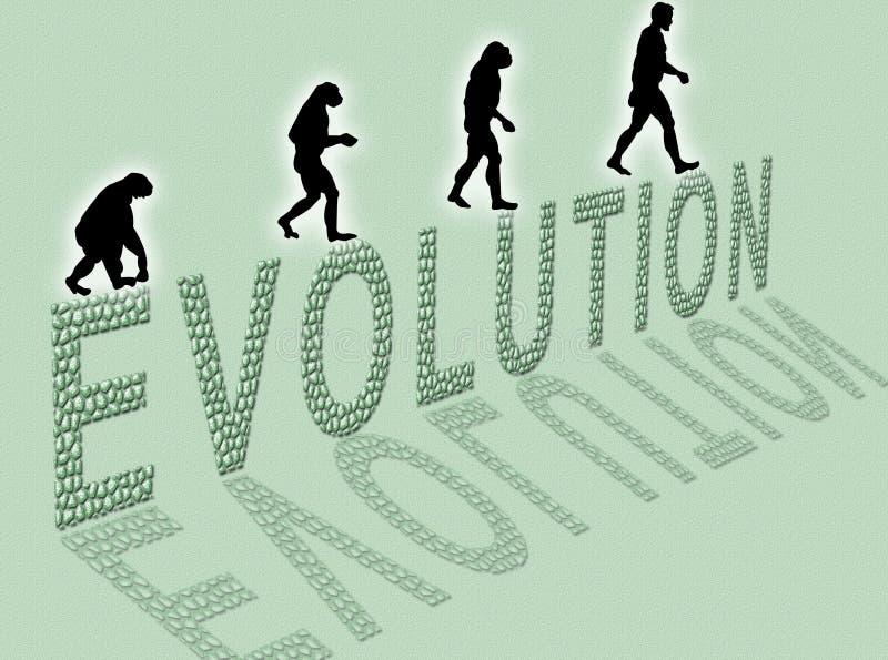 Evolutie vector illustratie