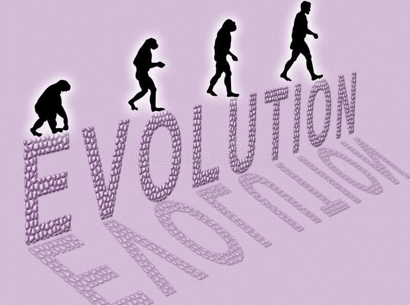 Evolutie stock illustratie