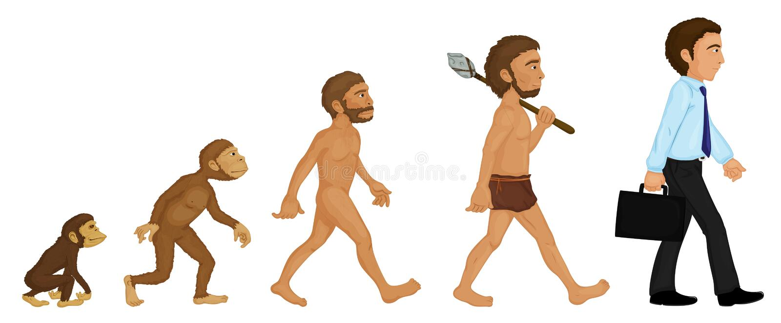 Evolutie stock illustratie