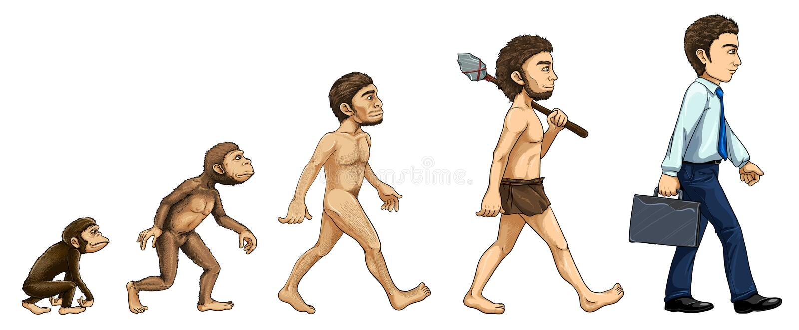 Evolutie van de mens stock illustratie