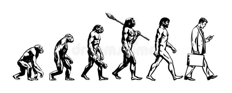 Evolutietheorie van de mens royalty-vrije illustratie