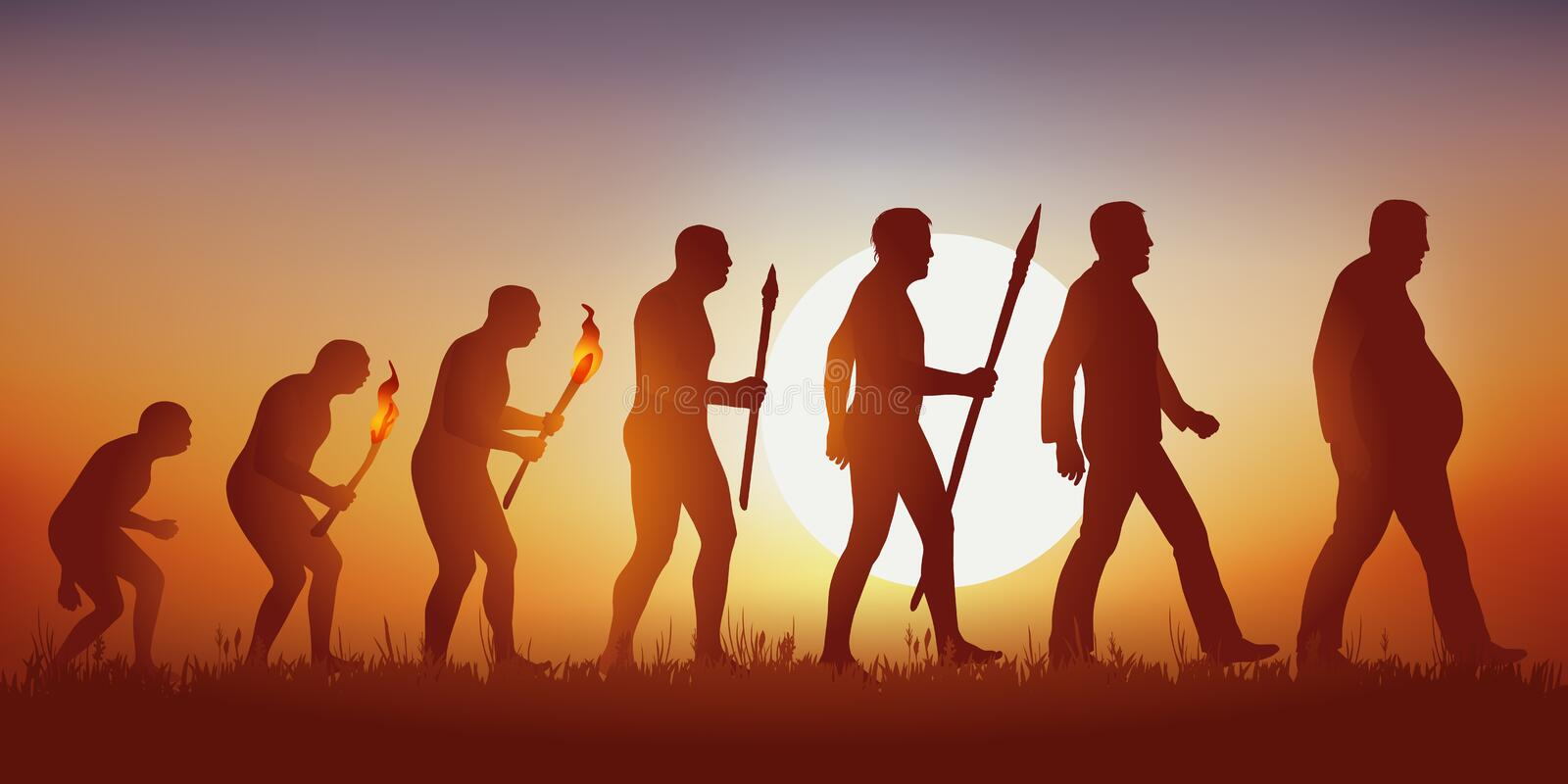 Theory of evolution of Darwin's human silhouette ending in the silhouette of an obese man. stock illustration