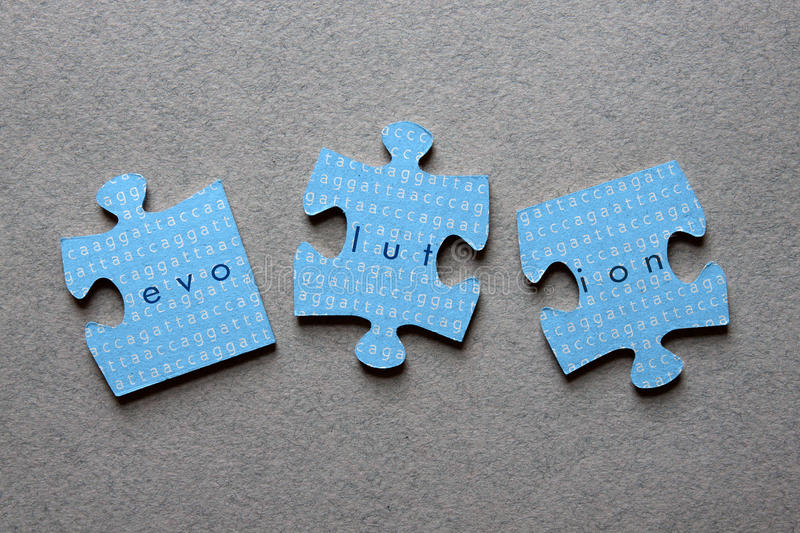 Evolution Jigsaw Mismatched. The word Evolution against background of human genome sequence printed on mismatched jigsaw pieces royalty free stock photos