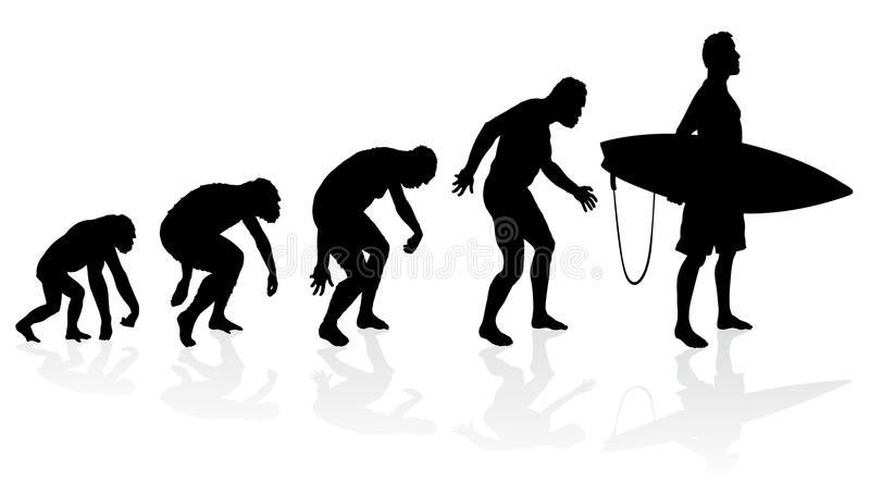 Evolution of the surfer. Illustration of depicting the evolution of a male from ape to surfer in silhouette royalty free illustration