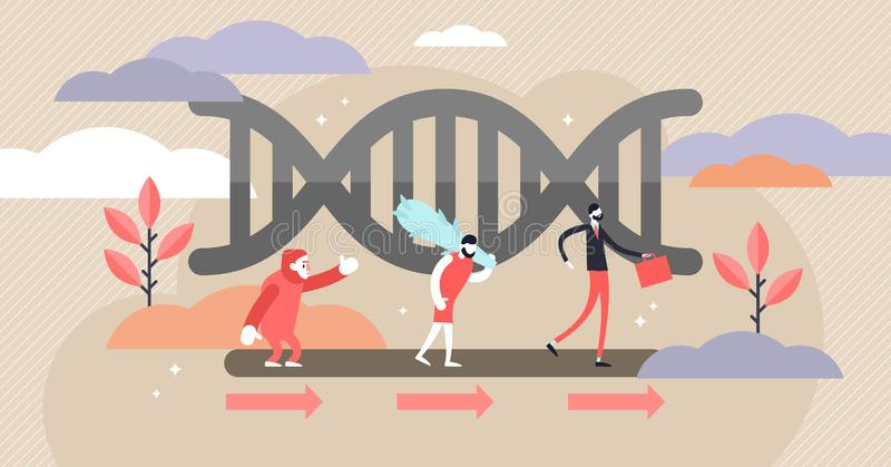 Evolution vector illustration. Flat tiny development theory persons concept. Biology science ancient to modern connection development connection research royalty free illustration