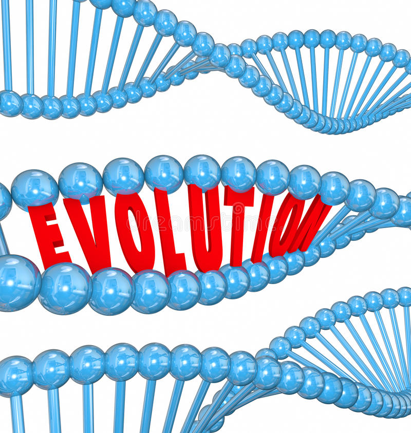 Evolution Word Letters DNA Strand Family Ancestors Genes. Evolution word in red 3d letters in a strand of DNA as a symbol of science and research into the origin stock illustration