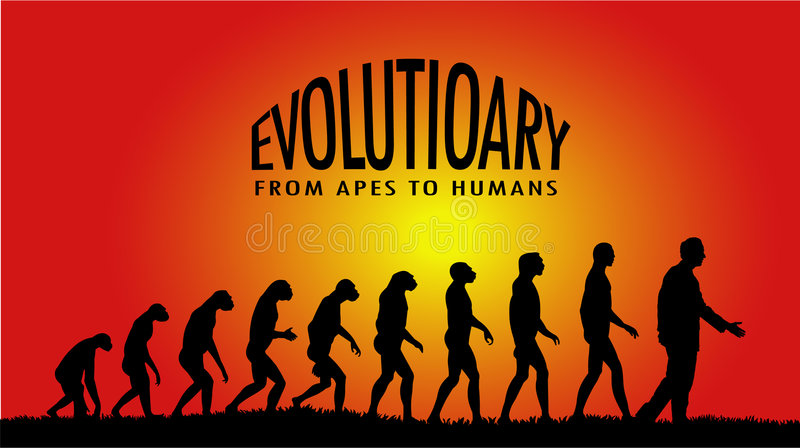 Evolutionary royalty free illustration